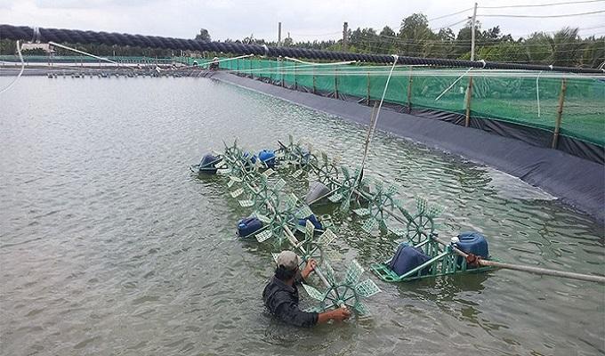 Sử dụng máy thổi khí để tăng hàm lượng ôxi trong nuôi trồng thủy sản